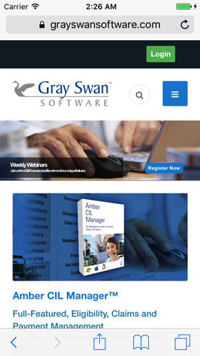 Gray Swan Software